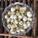 Белые горохи Wasabi Coated зеленые