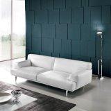 Sofá moderno da tela do lazer da mobília da casa (F720-10-1)