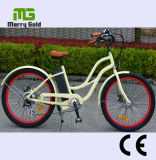 Frauen Easy Ride Two Wheel Electric Bike mit LCD Display