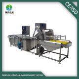 De Dadelpalm SUS304 die van uitstekende kwaliteit Aan de lucht drogend Machine met Ce- Certificaat schoonmaken