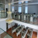 큰 공간을%s 가진 아름다운 강철 구조물 사무실 건물