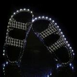 2016 Schoenen van de Dans van de Schoenen van vrouwen de Populaire Toevallige Hete met USB Rechangetable