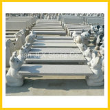 Banco animal cinzelado do jardim do granito decoração de pedra