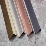 Specchio del testo fisso delle mattonelle dell'acciaio inossidabile del metallo di protezione della decorazione o superficie domestico della linea sottile