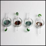 다채로운 연기가 나는 부속품을%s 유리제 왁스 석유 굴착 장치 접시 기름 Dabber에 의하여 일되는 농축물 접시 재떨이 재떨이 접시 석유 굴착 장치 또는 접시 또는 Dabber
