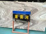 El mármol del modelo del Rin, azulejo Polished blanco de la losa