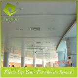 Intérieur en aluminium décoratif en plafond à plafond pour la station