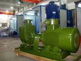 폭발 방지 Self-Priming 기름 펌프 (CYZ-A)