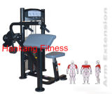 Forme physique, machine body-building, matériel de construction de corps, bras Extension-PT-805