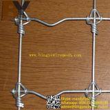 Frontière de sécurité fixe Rolls de Solidlock de noeud pour le contrôle de cerfs communs