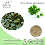 Extrait perdant de grain de café de vert de poids (acide chlorogénique de 10%~50%)