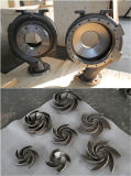 Éléments de pompe en acier de /Carbon acier d'acier inoxydable de moulage au sable/allié