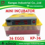 Incubateur bon marché automatique d'oeufs de poulet de 36 oeufs de poulet avec le plateau d'oeufs à vendre