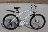 Bicicleta da montanha da bicicleta de montanha 26inch da venda por atacado da fábrica da bicicleta de China (OKM-695)