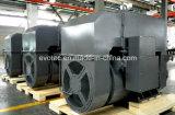 Pmgの二重ベアリング高圧AC同期発電機