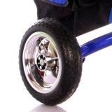 En71를 가진 세발자전거가 다기능 유모차 세발자전거에 의하여 농담을 한다