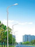 최고 가격 9m 폴란드 70W LED 태양 가로등