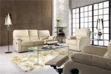 Sofá de la sala de estar con el sofá moderno del cuero genuino fijado (569)