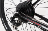 Spätestes Fahrrad des Entwurfs-Berge