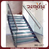 Morden intererior acero de cristal de la escalera (DMS-2071)