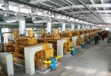 centrale elettrica di gassificazione della biomassa della strumentazione di cogenerazione 10kw-600kw