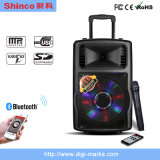 Good Sound 200W Bluetooth Karaoke Battery Speaker