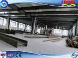 Гальванизированная светлая стальная структура с твердой рамкой (SSW-013)