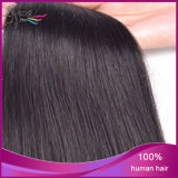 Prolonge non transformée indienne droite de cheveux humains