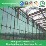 Invernadero de cristal de Venlo de la alta calidad con el sistema de enfriamiento