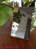 Zilver Geplateerde Spiegel/Zilveren Deklaag Weerspiegelde Spiegel