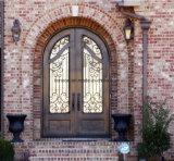 家のためのカスタマイズされたアークの上の錬鉄の倍の出入口