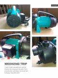 (SDP600-2) Bomba quente de alta pressão do verão da bomba centrífuga de bomba de água de superfície do jardim