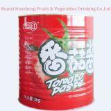 3000g 28%-30%缶詰にされたトマトのり