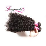 未加工加工されていない100%の人間のマレーシアのねじれた巻き毛のバージンの毛