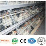 Оборудование клетки цыпленка батареи слоя