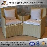 クッションが付いているFurnir健康なWf-17063の籐椅子