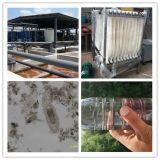 500 mètres cubes par traitement des eaux de rebut résidentiel de jour avec la solution de Mbr