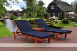 Presidenza del Poolside di legno solido con la stuoia smontabile (WH-D980)