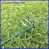 鋭いのみポイントが付いているファブリック泥炭ピン棒を美化するUの芝地のステープル