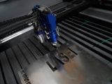Tagliatrice calda del laser del metallo & del metalloide di vendita (DW1390M)