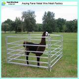 Тип продукта поголовья и живая панель овец типа/панель козочки