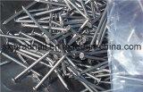 Großhandelsbefestigungsteil-geläufige runde Nagel-Eisen-Nägel in China