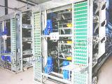 Quatre cage complètement automatique de couche de capacité des rangées 128