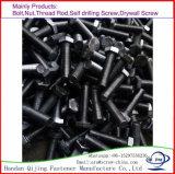 Boulon Hex, noir, zinc, galvanisation chaude