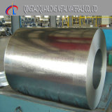 ASTM A653 SPCC Galvanized Iron Steel Coil