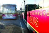 버스를 위한 고성능 리튬 철 인산염 건전지 (LiFePO4)