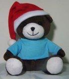 2014 de Teddybeer van Kerstmis (B021)