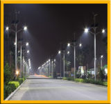 Réverbère solaire de LED avec Polonais galvanisé