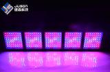 卸し売りプラントは赤く青い紫外線LEDが付いているライト1600Wを育てる