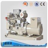 50kw Weichai Ricardo 시리즈 바다 디젤 엔진 발전기 세트